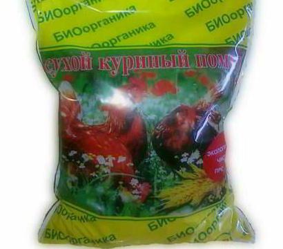 pomidory vyrashchivanie 11
