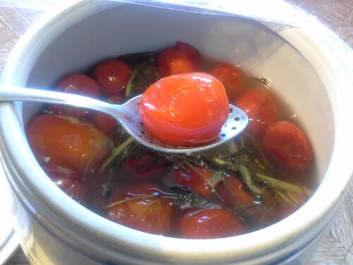 pomidory v bochke 1