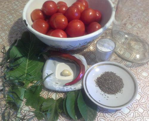 solenye pomidory 2
