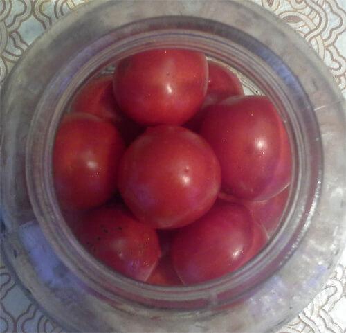 solenye pomidory 4
