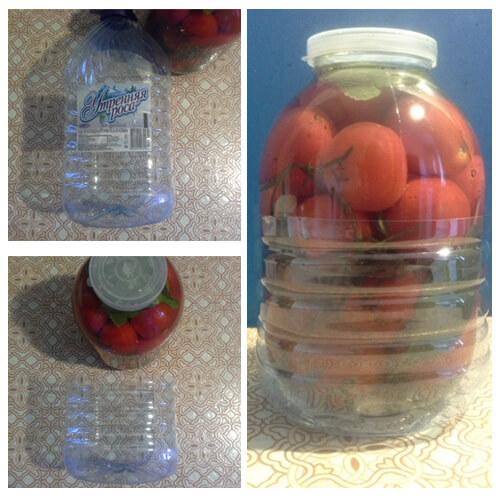 solenye pomidory 9