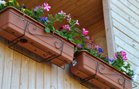 Ящики для растений на балконе