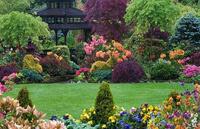 Посадка и уход за растениями и цветами на участке.