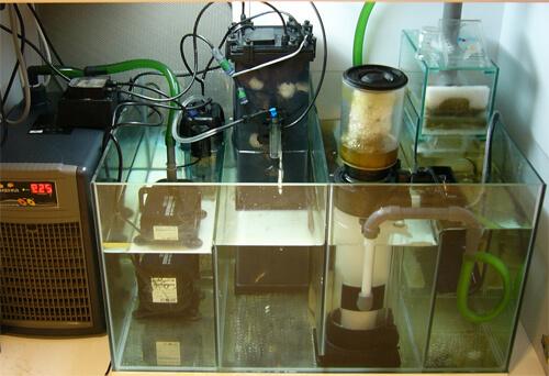 САМП для аквариума или аквариумный отстойник.