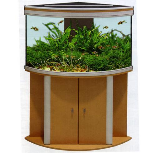 Треугольный аквариум с изогнутым (выпуклым) дисплеем.
